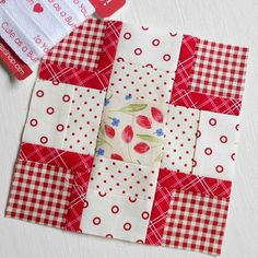 100 Moderrn Quilt Blocks - Block Four. Of course there has to be a little touch of gingham in my modern country Tula Pink City Sampler.