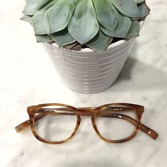 Warby Parker 'Lyle' Eye Glasses Warby Parker Lyle demo frames in English Oak. Clear glasses with no prescription in them, but they can be put in with your Rx! Worn once. No trades please :) Warby Parker Accessories Glasses