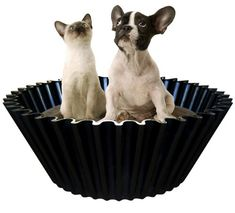Obsessed dog bed by Sweet Cake I saw on Dog-Milk.com. Hopefully this would get Boomer out of our laundry basket.