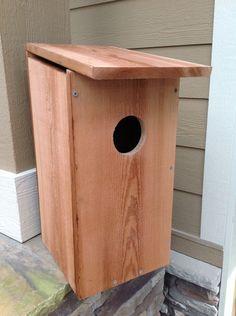 Building a Screech Owl Birdhouse