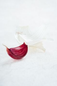 Garlic by Alessandro Guerani Fruit And Veg, Fruits And Veggies, Vegetables, Food Photography Styling, Food Styling, Photography Ideas, Slow Food, A Food, Purple Food