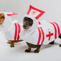 Nurse Raincoat