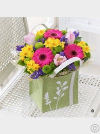 Spring Flowers Dublin from Floral Scents Florist. Beautiful Spring flowers delivered for all occasions. Daffodil Flower, Easter Flowers, Valentines Flowers, Mothers Day Flowers, Christmas Flowers, Spring Flowers, Best Flower Delivery, Flower Delivery Service, Online Flower Delivery