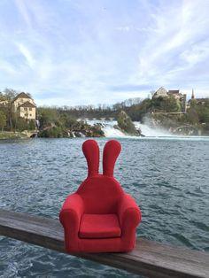 #Honeydewrabbit  #허니듀래빗 #스위스 #Rheinfall #Switzerland
