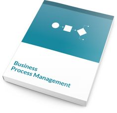 The Business Process Management program is based on the six steps of the business process life cycle and process improvement tools.