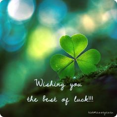 On this webpage you will find a large collection of unique good luck quotes, wishes and messages as well as beautiful good luck cards and images. Good Luck For Exams, Good Luck Today, Good Luck Wishes, Good Luck Cards, Flirting Quotes For Him, Flirting Humor, Good Luck Quotes, Good Luck Clover, Wish You Luck