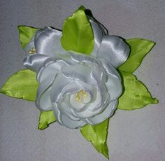 Plant Leaves, Ribbon, Flowers, Plants, Tape, Treadmills, Ribbon Hair Bows, Flora, Plant