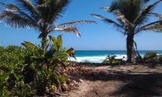 Hard Rock - Punta Cana YES :-)