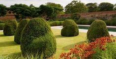 A Norfolk garden < Private gardens | Tom Stuart-Smith