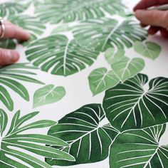 My first fabric is close to sampling! Designed it with all my favorite tropicals and my newfound Philodendron Gloriosum love.