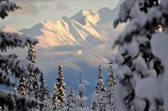 Cariboo winter-mountains in BC