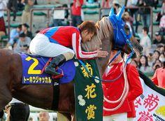 14年菊花賞馬トーホウジャッカルが屈腱炎で引退