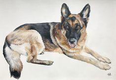 A2 Pet Portraits, Hand Painted, Pets, Artist, Painting, Beautiful, Painting Art, Paintings, Painted Canvas