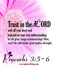 Proverbs 3:5-6 Trust in the LORD with ALL YOUR HEART and lean not on your own understanding; in all your ways acknowledge him, and he will make your paths straight. My favorite verse in Proverbs