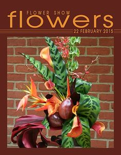 22 February 2015… A Year in Flowers PLANT LIST: Bells of Ireland,Calathea, Calla Lilies, Cordyline, Heliconia, James Storey Orchids & Pear FROM: www.FlowerShowFlowers.com