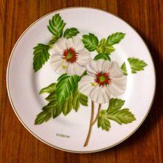 """""""Set de pratos """"Botânica"""" pintados a mão"""""""