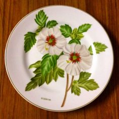 """Set de pratos """"Botânica"""" pintados a mão"""