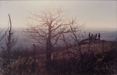 Meeting on the Hill, 2000  by Justine Kurland