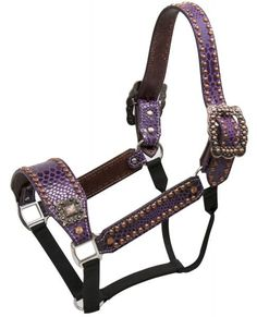 Showman ® Purple snake print belt style halter with copper accents. Full size halter featuring the belt style leather with purple snake print overlay on cheeks, nose and crown. Large brushed copper bu
