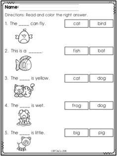 Kindergarten Read and Write Freebie by BFC and Co Teaching Resources English Worksheets For Kindergarten, First Grade Worksheets, Phonics Worksheets, Kindergarten Writing, Preschool Learning, Kindergarten Handwriting, Kindergarten Special Education, Teaching, Literacy