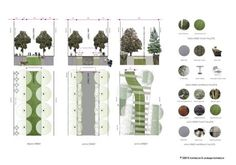 urban design street sections - Google Search