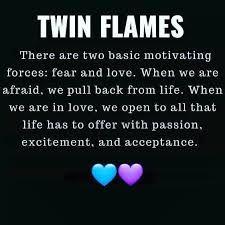 Twin Flame Quotes, Twins, Gemini, Twin