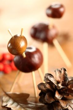 1000 images about chestnut on pinterest pencil toppers horse chestnut and conkers - Acorn and chestnut crafts ...