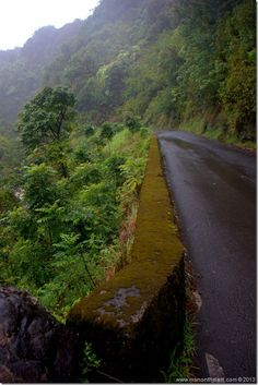 The Road to Hana, Maui, Hawaii. There are 620 curves and I would love to see every one of them :)