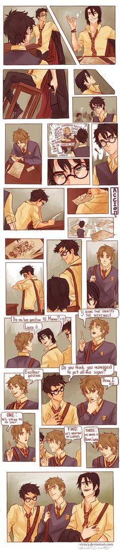 Remus Lupin, Sirius Black, James Potter and peter pettigrew