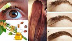 Si quieres hacer que tu cabello, cejas y pestañas paren de caerse, estén sanos…