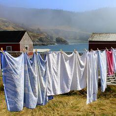 Emmas Clothesline http://www.amazon.com/Take-Me-Home-Sheila-Blanchette-ebook/dp/B00HRFZ8GC/ref=sr_1_3?s=digital-text&ie=UTF8&qid=1392849379&sr=1-3&keywords=take+me+home