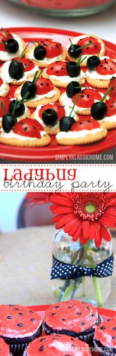 Since her brother was having a bug party, Riley insisted she wanted a bug party too. I finally talked her into a LADYBUG party, knowing that I could do a lot with the red and black polka dots…More First Birthday Parties, Girl Birthday, Birthday Ideas, Summer Birthday, Birthday Snacks, Frozen Birthday, Red Birthday Party, Picnic Birthday, Birthday Gifts