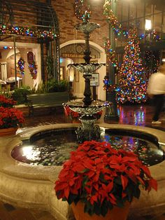"""December (OP: """"Port Orleans French Quarter Christmas, I hope we stay here next Christmas. Christmas Scenery, Cozy Christmas, Beautiful Christmas, Christmas Lights, Christmas Holidays, Xmas, Christmas Pictures, Family Christmas, Happy Holidays"""