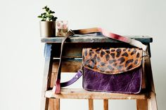 Purple leopard - b