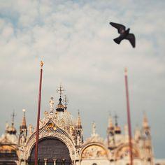 St. Marks Basilica. Venice, Italy.  Print available.