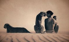 gregory colbert images - Google Search