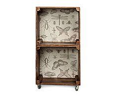 Estantería de DM con 2 Módulos Insectos Decor, Furniture, Box Shelves, Shelves, Home Decor, Roman Shade Curtain, Cool Furniture, Decorative Tray, Corner Bookcase