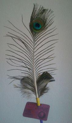 Plumas de Pavo Real  https://www.youtube.com/watch?v=l3Oc8yoVFPU  Pocas cosas le gustan tanto a nuestros mininos como las plumas y entre mas grandes, mejor!  Plumas de pavo real 100% naturales, sin ninguna clase de tinturas para evitar intoxicaciones, acompañadas de... mas plumas (les encantan ;) ).  Precio: $6.000 pesos colombianos.  Informes: 3144309086 - 3013667 / www.facebook.com/migatoylaluna