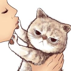 "9 ""No Kisses"" Cat Illustrations That Every Cat Person Should See! 9 ""No Kisses"" Cat Illustrations That Every Cat Person Should See! Cute Kittens, Cats And Kittens, Cats Meowing, Ragdoll Kittens, Tabby Cats, Bengal Cats, Siamese Cats, Kitty Cats, Big Cats"