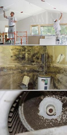 Choose this business if you're searching for mold inspection and thermal imaging. They also offer indoor relative humidity reading, moisture testing, leak detection and more.