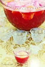 Sparkling Cranberry Holiday Punch