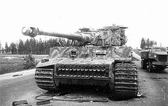 """Damaged """"Tiger"""" of the 505 th heavy tank battalion. 12 white rings on the gun barrel corresponds to the number of tanks destroyed by this machine. Belarus, July 1944."""