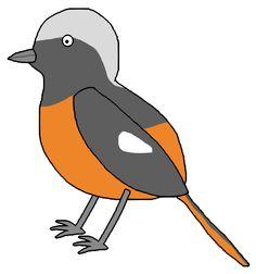 Daurian Redstart / ジョウビタキ / #Animal #Bird