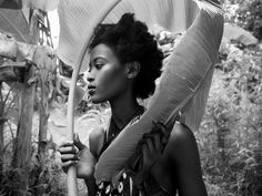 Jungle Fever - Fotografia