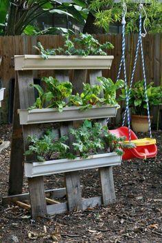 Gutter garden on an a frame. Love it!!
