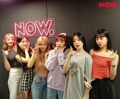 Kpop Girl Groups, Korean Girl Groups, Kpop Girls, Neon Heart Light, My Girl, Cool Girl, Kim Min Hee, Soyeon, Soo Jin