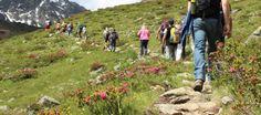 Ontdek Tirol deze zomer met een bijzondere gastronomische wandeling | Lekker Tafelen