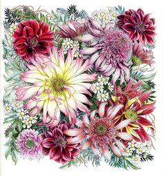 完成~❤ 大きなダリアが浮いてる・・・ ん!次頑張ろう(笑) 風邪。ずいぶん楽になりました。 ご心配お掛けしました 2016.11.27 21:15 #Leiladuly #FLORIBUNDA #coloredpencildrawing #coloringbook #flowers #coloredpencil #レイラデュリー #大人の塗り絵 #色鉛筆 #世界一美しい花の塗り絵book #世界一美しい花のぬり絵book