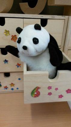 ( ordenen en sorteren) Panda sorteerbeer woont in laatje 6 hij sorteert en ordent alles