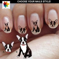 Face dog Boston Terrier Nail Decal 110 or 82 di Nailsgraphicworld, $6.90